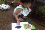 Bibit Bawang