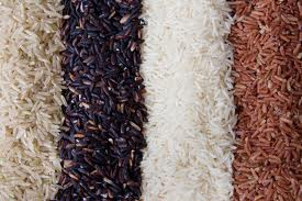 aneka macam beras
