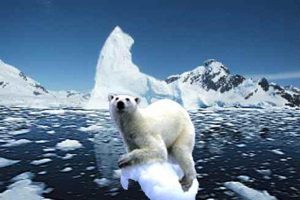 Dampak Global Warming