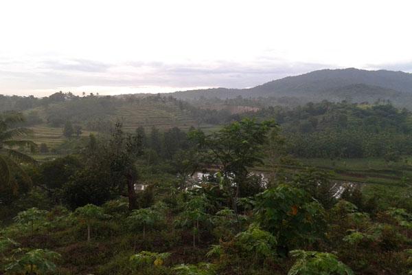 pemandangan bukit