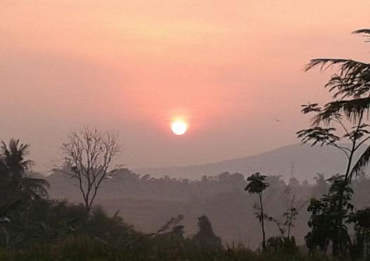 sun rise in waras farm