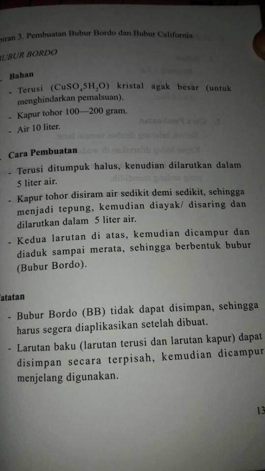 bubur-bordo-2